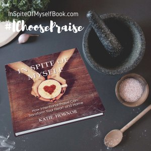 I Choose Praise –  In Spite of Myself – Book Review