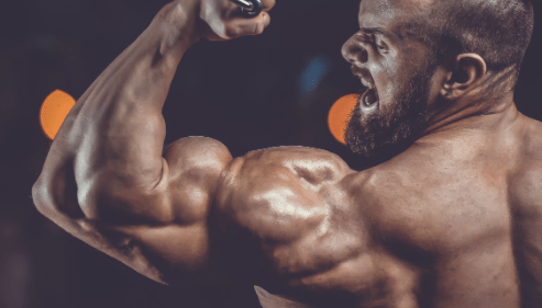 The Best Prohormone For Cutting Overview – Ultimate Guide