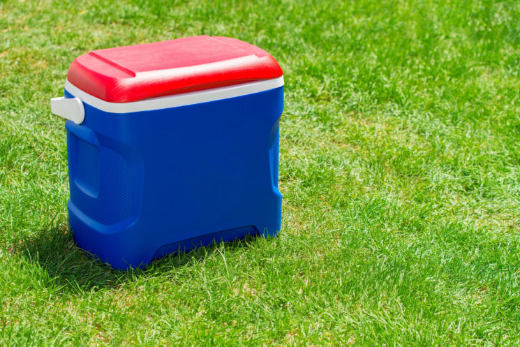 blue and red cooler in grass