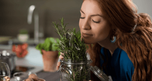 Benefits Of Rosemary For Hair Growth