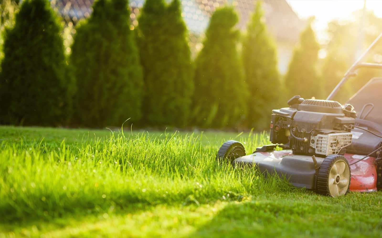 Lawnmowers & Quads