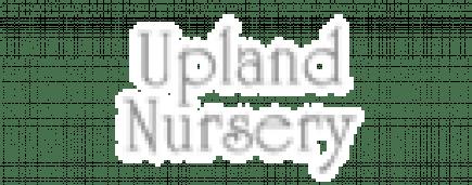upland-nursery