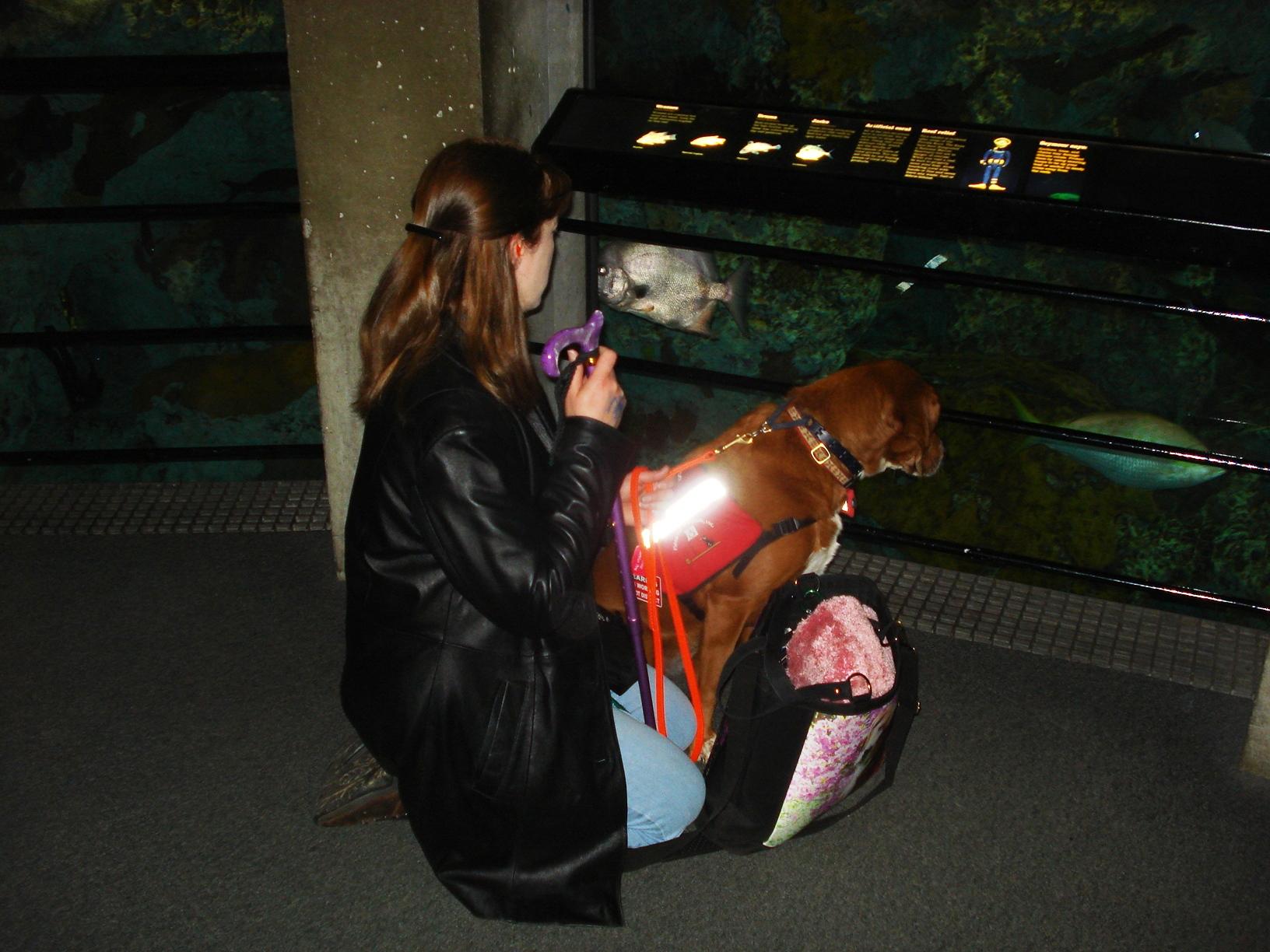 aquarium-001