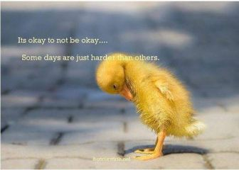 Its okay to not be okay. Some days are just harder than others.'