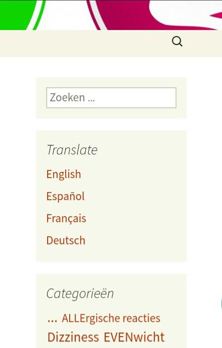 screenshot van de mogelijkheid mijn blog nu te vertalen in het Engels, Spaans, Frans en Duits
