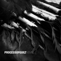Process Of Guilt - Faemin