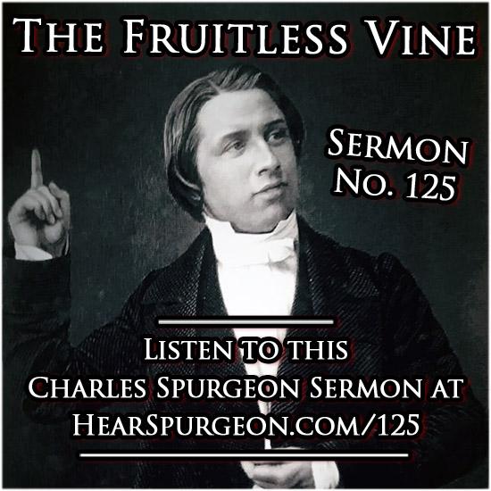sermon 125, fruitless vine, ezekiel 15, spurgeon audio, sermon audio