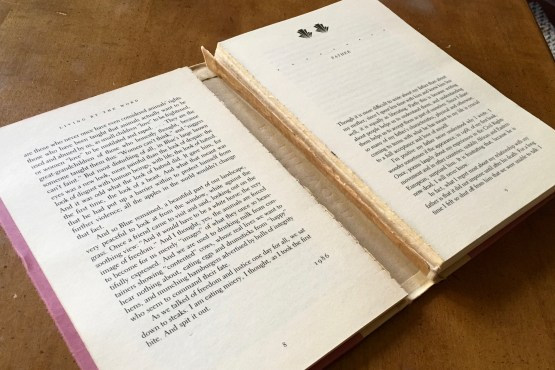 View of the book's inside binding coming loose and pages falling away.