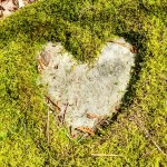 This photo shows a heart found in nature: green moss has been cut into the shape of a heart, revealing a light grey rock underneath. I took this photo when hiking in Wisconsin, earlier in 2018—at a time when I was planting the self-love seed for this post.