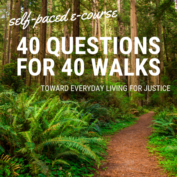 """This e-course announcement shows a red-brown trail winding through green ferns and hardwood forest. It shares the following information: """"self-paced e-course, 40 QUESTIONS FOR 40 WALKS: Toward Everyday Living for Justice."""""""