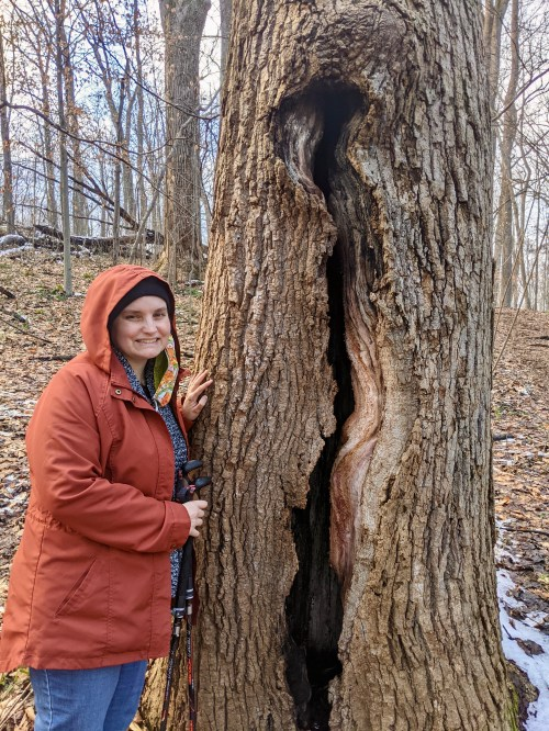 Photo shows Beth wearing layers of winter clothing, including an orange coat and face mask. Beth stands next to a tree trunk that's split open. The crack is taller than Beth, and the tree is large (wide and tall and deeply rooted). It's still alive—with many branches reaching to the forest's canopy. The forest floor has both fallen leaves and bits of ice. In a year that's cracked me open (like this cracked tree trunk), the winter solstice feels full of possibility: renewing of light, changing of seasons, warming of spirits.