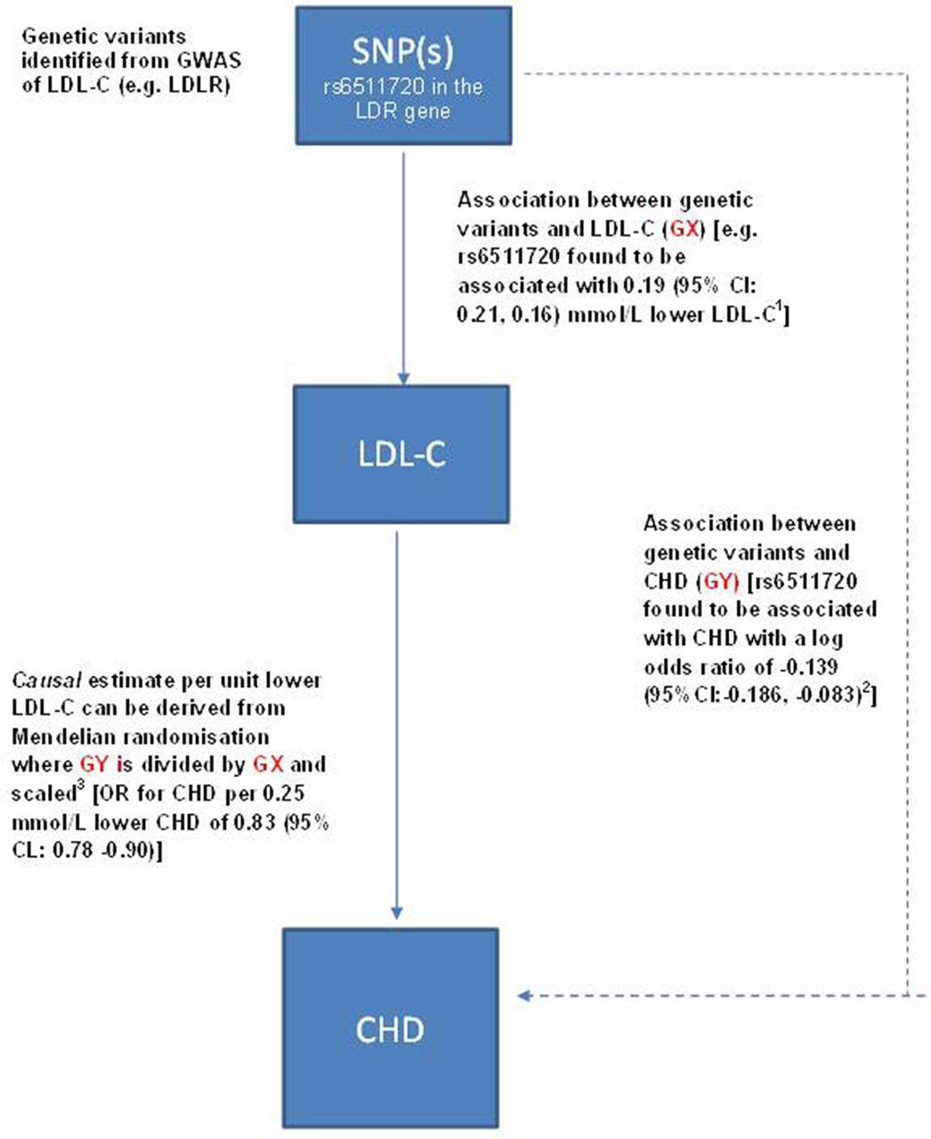 Mendelian randomisation in cardiovascular research: an introduction for clinicians | Heart