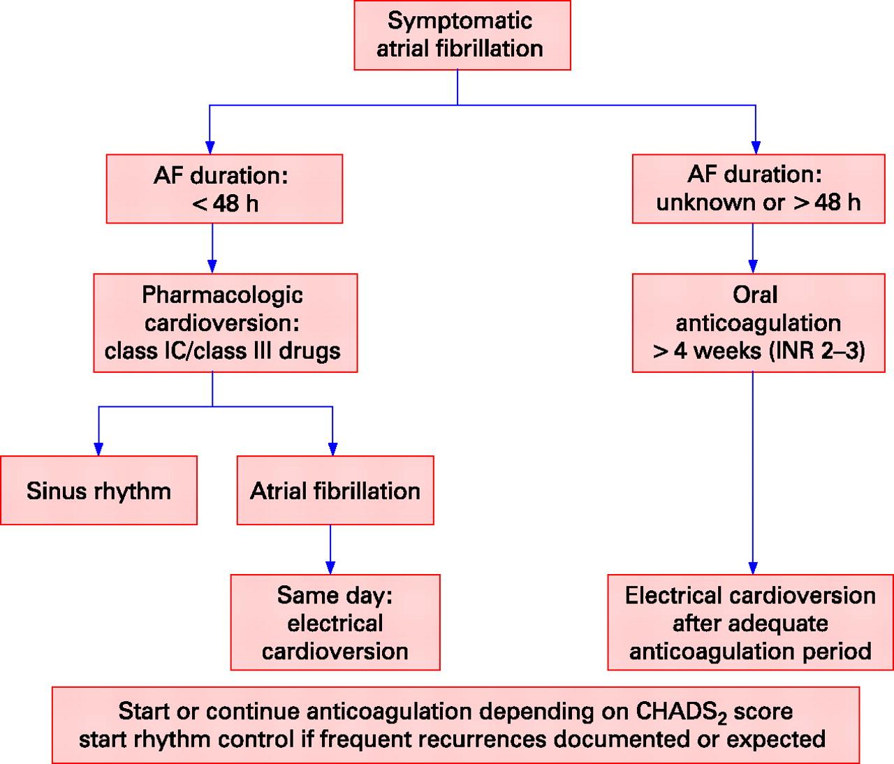 Treatment Of Atrial Fibrillation Heart