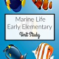 Resources and ideas for a hands-on early elementary marine life unit study. heartandsoulhomeschooling.com