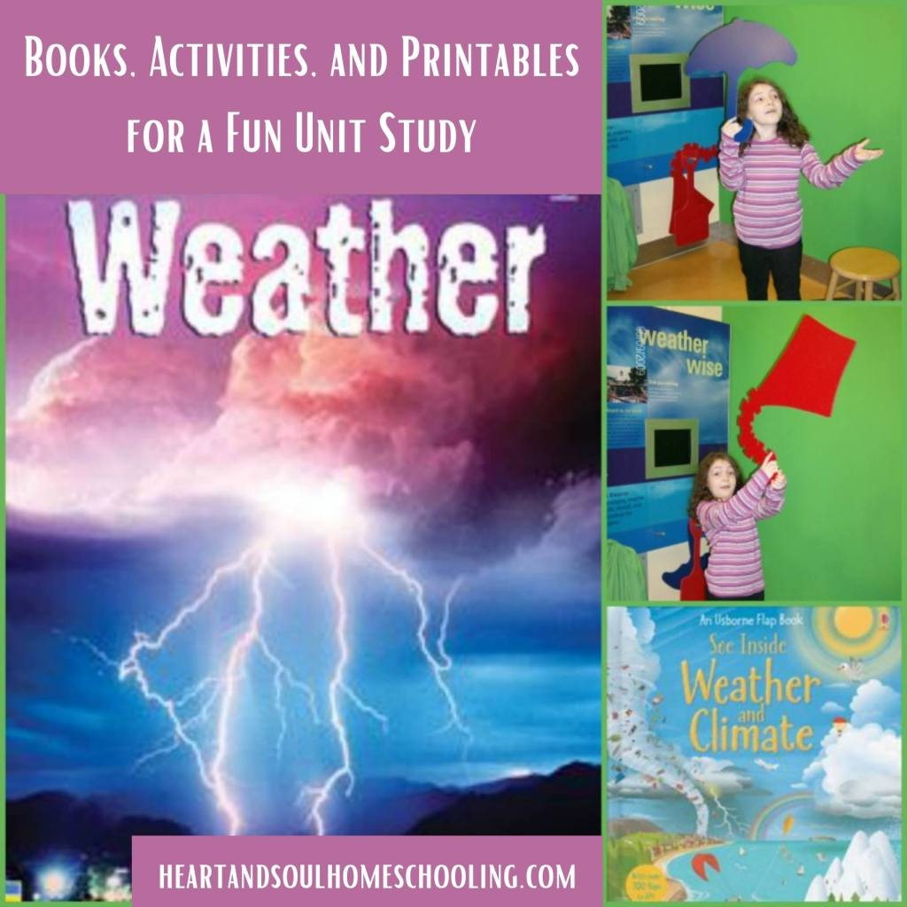 Activities for the investigation of weather units