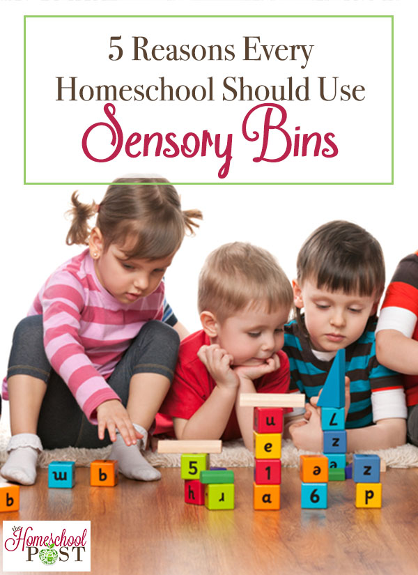 5 Reasons Every Homeschool Should Use Sensory Bins