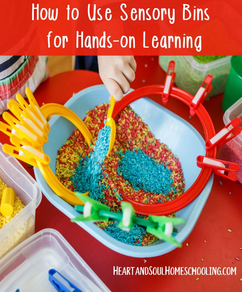 A basic guide to using sensory bins for hands-on learning | homeschooling with sensory bins | how to use sensory bins | how to make sensory bins