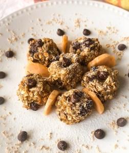 Honey Oats & Peanut Butter Chocolate Anytizer Bites