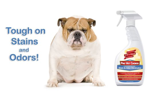 Pet Stain Remover and Odor Eliminator