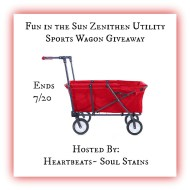 Fun in The Sun Zenithen Utility Sports Wagon Giveaway