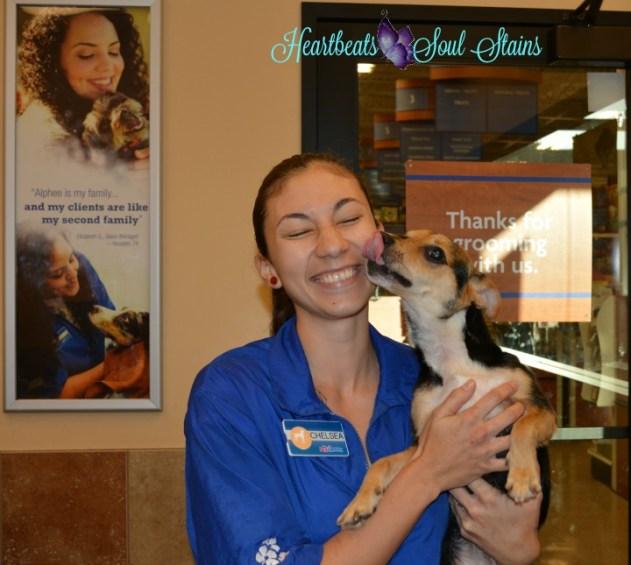 Lehua & Chelsea PetSmart Grooming