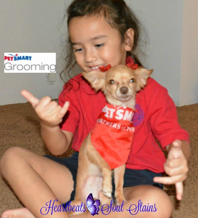 Sofia & Ilima PetSmart Grooming 2