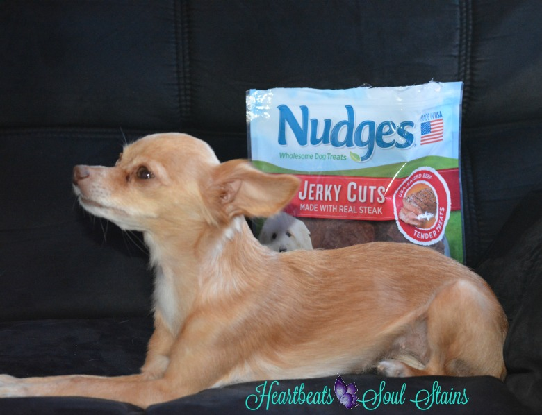 Nudges Wholesome Dog Treats