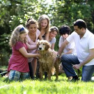 Tips On Buying A Pet For Your Family
