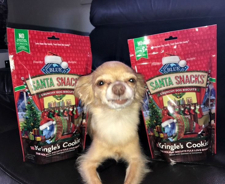 Gift Ideas For The Holidays with Treats From Blue Buffalo