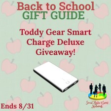 Welcome to the Toddy Gear Smart Charge Deluxe Giveaway