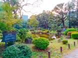 日比谷公園〜銀ぶら10