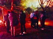 紅葉旧古河庭園〜ライトアップ六義園23