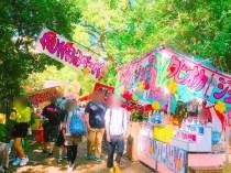 根津神社つつじ祭り12