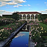 October in the magic of a Rose garden, with scents to stretch the boundariesof magic and imagination