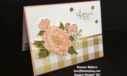 Stampin Up Birthday Blooms Birthday Card Ideas - Rosanne Mulhern
