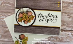 Stampin Up Count My Blessings Thinking of You Cards - Rosanne Mulhern