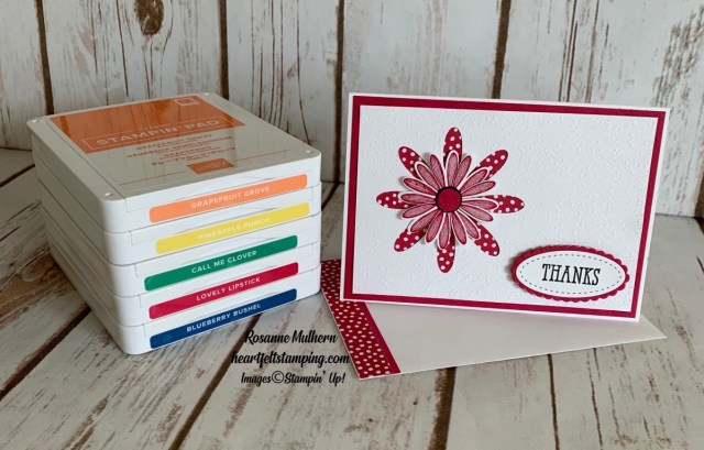 Stampin Up Daisy In-Color Thank You Notes-Rosanne Mulhern stampinup