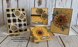 Stampin Up Celebrate Sunflowers July Tutorials - Rosanne Mulhern stampinup
