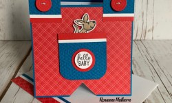 Stampin Up Kangaroo and Company Baby Card Ideas - Rosanne Mulhern stampinup