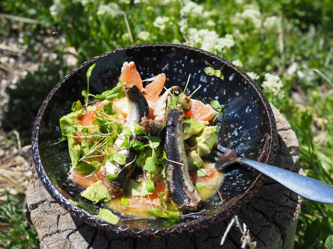 Salad of grapefruit avocado and sardines