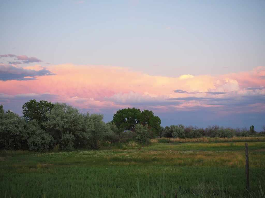 Pastel colored sky over pasture in Utah