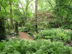 reay garden