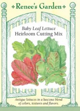 Lettuce_Heirloom_Cutting_Front_5029