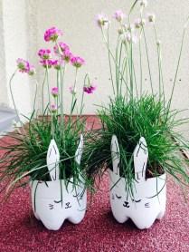 bunny planters