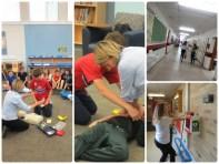 Healthy Heart Schools Program