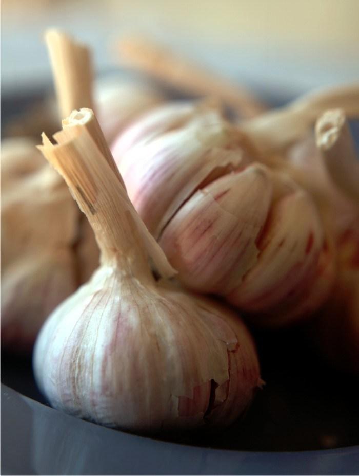 frt garlic