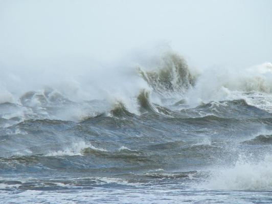 Duck trip, big waves!