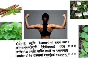 Introduction à l'astrologie védique, le Jyotisha