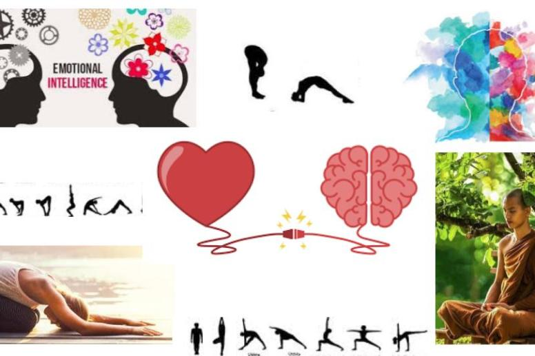 #yoga#meditation#intelligence#émotionelle#Ayurveda#PAris