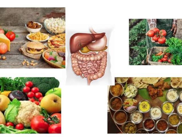 digestion optimale niveau central niveau cellulaire heartofayurveda paris